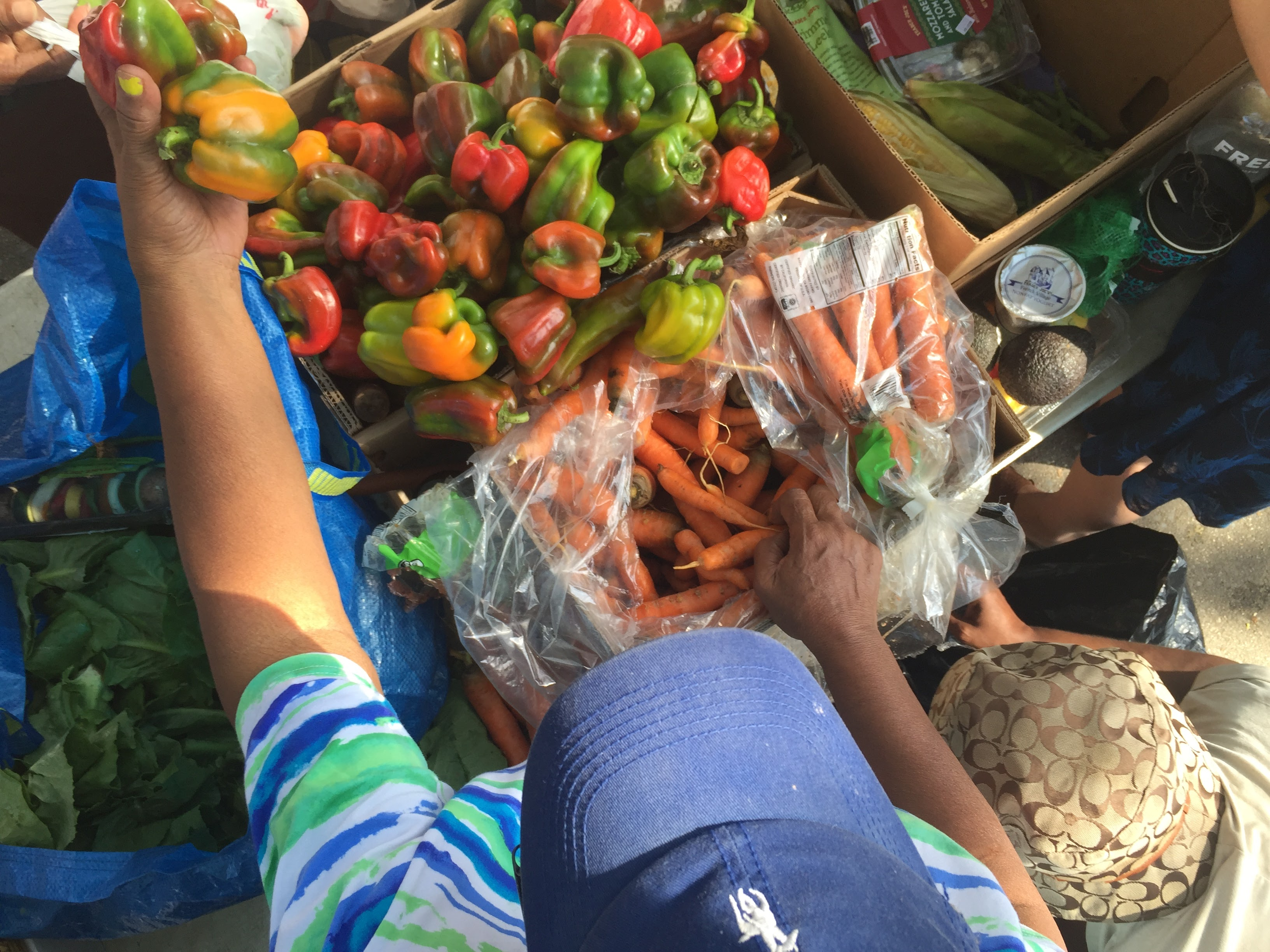 Sharing peppers at the Community Solidarity Bedstuy Food Share